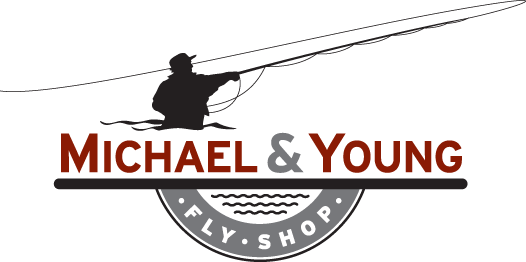 michael & young color logo