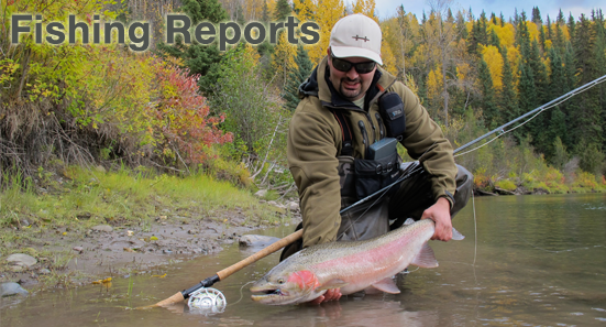 Read our fishing reports and you will learn where, how and when to fly fish British Columbia.