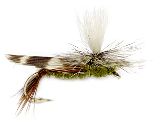 The hopper is a fun fly fishing pattern. It's big, fun to cast, fun to tie and the fish just adore the big, juicy, summer delights.