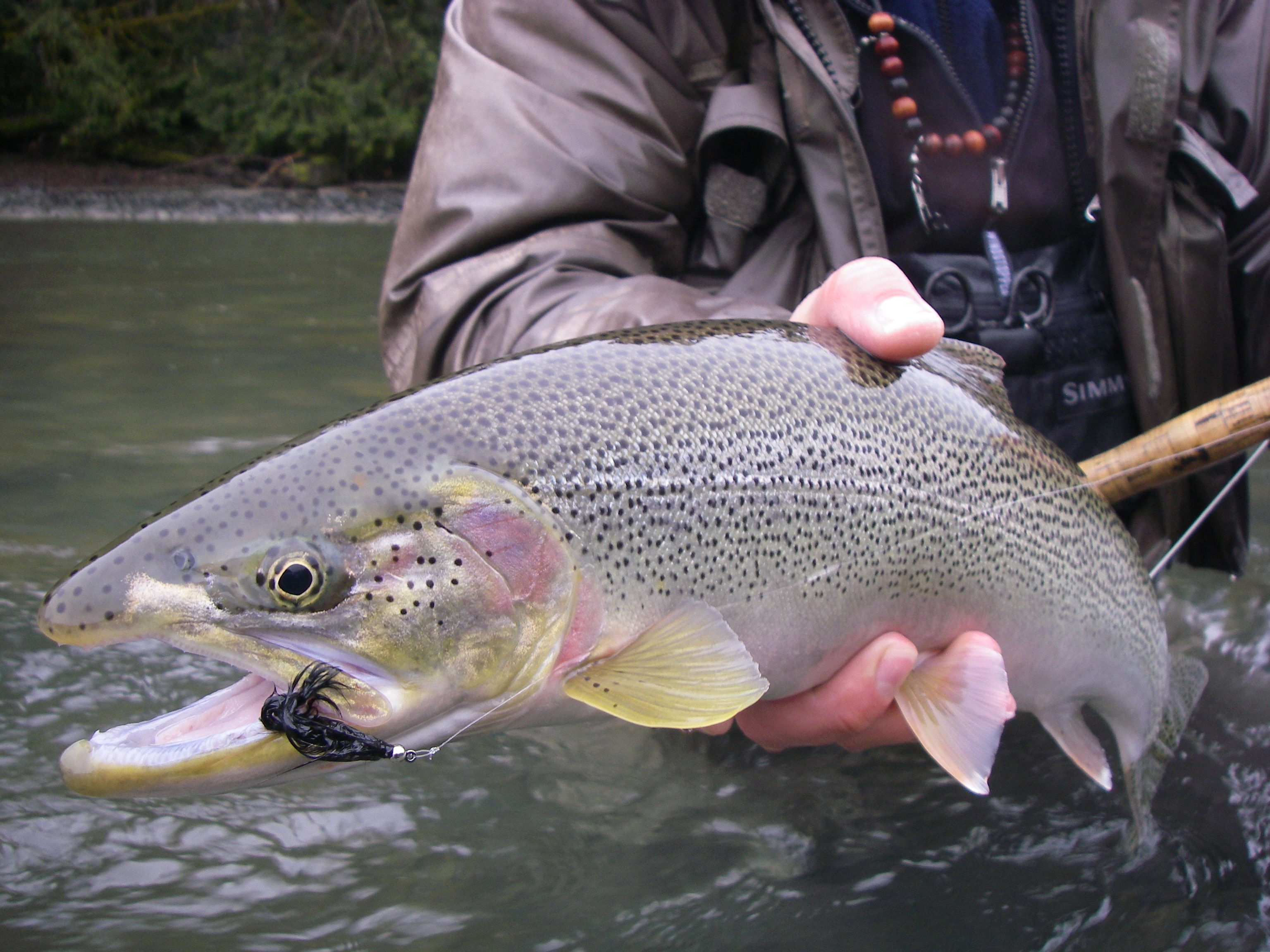 Lillooet River WINTER TROUT Course