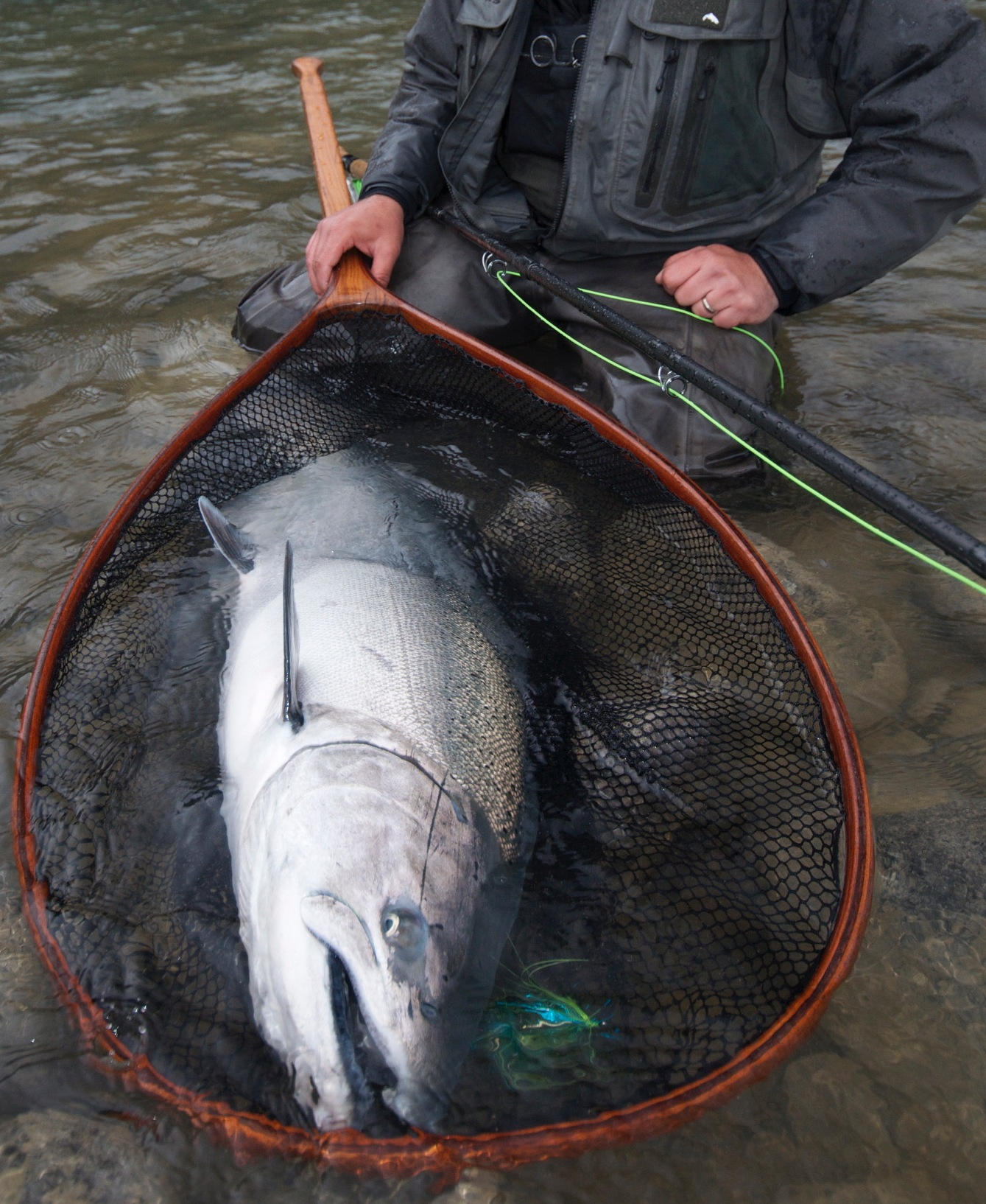 <p>Take your Spey Gear to the magnificent Lillooet River in search of sea-run monsters. </p>    <P>
